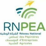 logo RNPEA